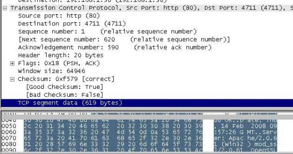 wireshark Segment Data